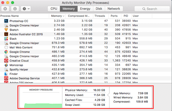 Check RAM Usage on Mac