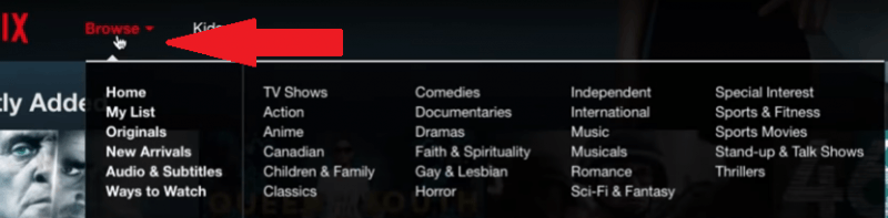 Navega por Netflix
